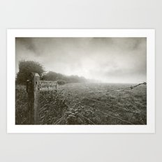 Woody Bay Art Print