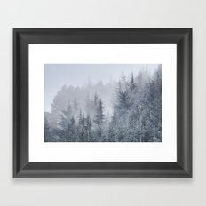 Early moorning... Into the woods Framed Art Print