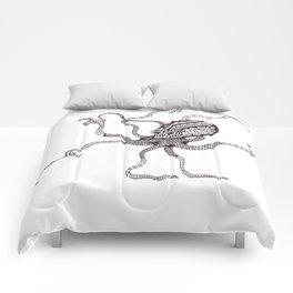 The Blind Octopus Comforters