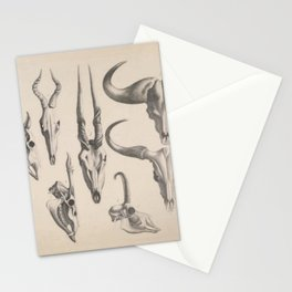 Antlers And Horns Stationery Cards