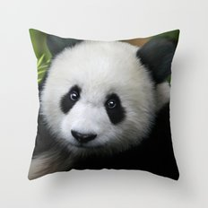 Giant Panda Cub Throw Pillow