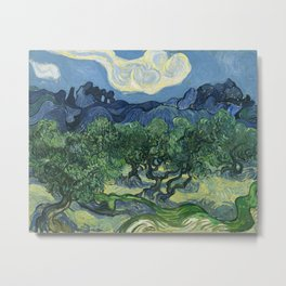 Olive Trees by Vincent van Gogh Metal Print