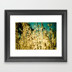 Wild Abandon Framed Art Print