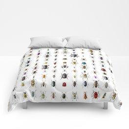 Beetlemania / Get your entomology on! Comforters