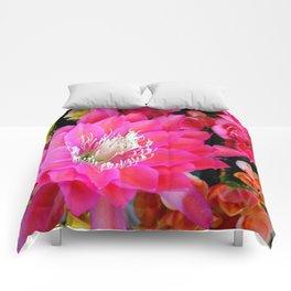 A Sensational Sunrise Comforters
