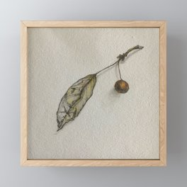 Apple leaf Framed Mini Art Print