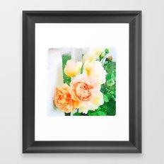 Cottage Roses Framed Art Print