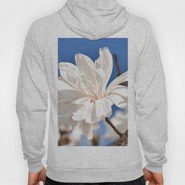 Magnolia in blue sky Hoody