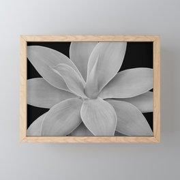 Gray Black Agave Romance #1 #tropical #decor #art #society6 Framed Mini Art Print