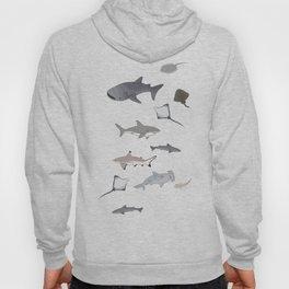Sharks and Rays Hoody