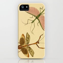 Naturalist Stick Bugs iPhone Case