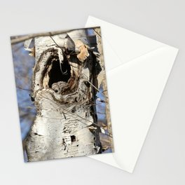 Mother owl incubating her eggs Stationery Cards