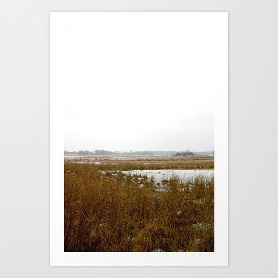 The Salt Marsh Art Print