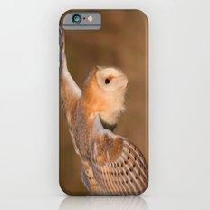 Barn Owl in Flight iPhone 6s Slim Case