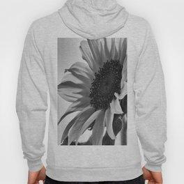 Sunflower Black & White Hoody