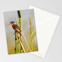 malachite kingfisher Stationery Cards
