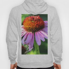 Cone Flower or Echinacea in Horicon Marsh Hoody