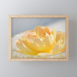Yellow Rose in Crystal Bowl Macro Floral Photography Framed Mini Art Print