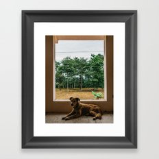 Sav in the Abandoned House Framed Art Print