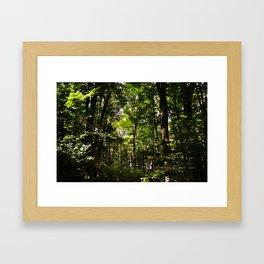 Forest // Adventure Sometime  Framed Art Print