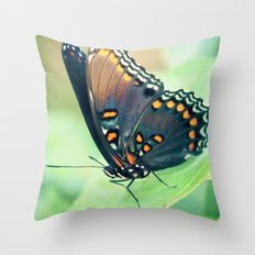Color by Numbers Throw Pillow