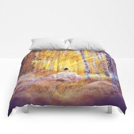 Magic Follows Comforters