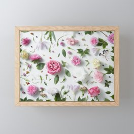 Flower Petals Framed Mini Art Print