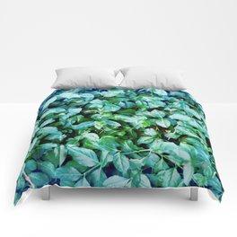 Grow Brighter Comforters