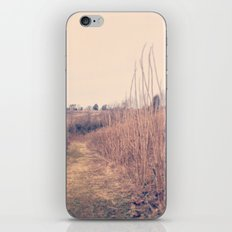 Nice Day iPhone & iPod Skin