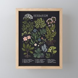 Herbarium ~ vintage inspired botanical art print ~ black Framed Mini Art Print