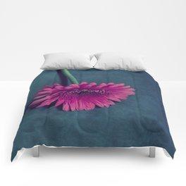 Gerbera for love Comforters