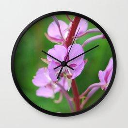 Fireweed Wildflower Wall Clock