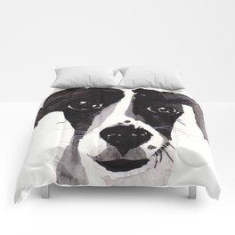 I'm innocent Comforters