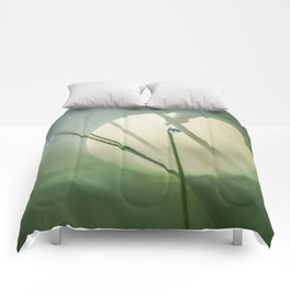 Mysterious world of morning dew Comforters
