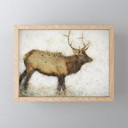 Grand Canyon Elk No. 1 Wintered Framed Mini Art Print