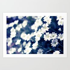 Flowers On A Cool Brooklyn Morning Art Print