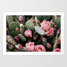 PINK CACTUS FLOWER ABSTRACT CLUSTER PATTERN Art Print