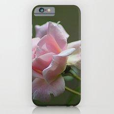 Pink Garden Rose iPhone 6s Slim Case