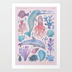 Et coloris natura VI Art Print