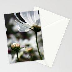 New Breezy  Stationery Cards