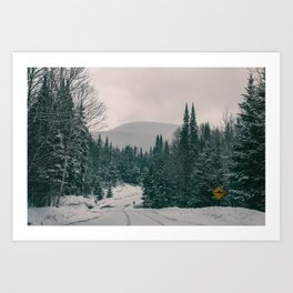 Lost in Winter Art Print