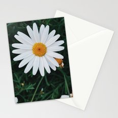 Evening Daisies Stationery Cards
