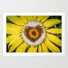 Sunflower of Love Art Print