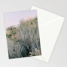 Desert Blush Stationery Cards