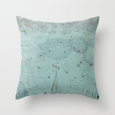 South Throw Pillow