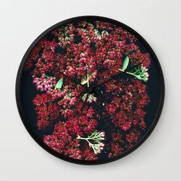 Burgundy Sedum Flowers Wall Clock