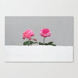 Happy Pink Roses Canvas Print