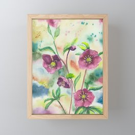 Lenten Roses - Watercolor Painting Framed Mini Art Print
