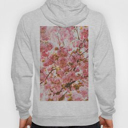 Beautiful Bundles Of Pink Cherry Blossoms In Full Bloom Japanese Sensibility Hoody