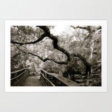 Bridge to ______ Art Print